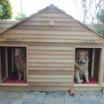 Charleston Handyman Dog Houses